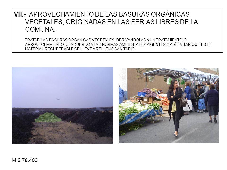 VII.- APROVECHAMIENTO DE LAS BASURAS ORGÁNICAS VEGETALES, ORIGINADAS EN LAS FERIAS LIBRES DE LA COMUNA.