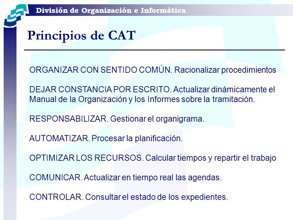 Principios de CAT ORGANIZAR CON SENTIDO COMÚN. Racionalizar procedimientos.