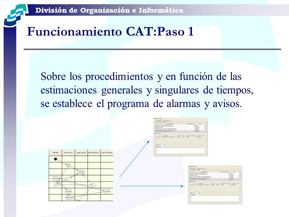 Funcionamiento CAT:Paso 1