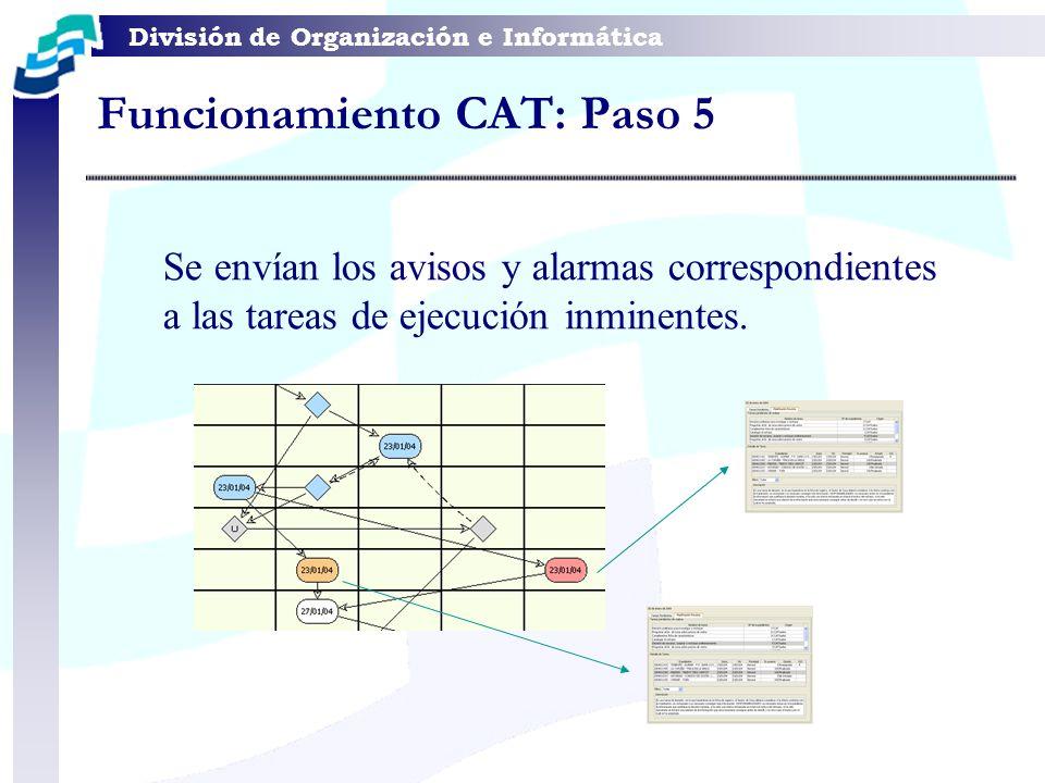Funcionamiento CAT: Paso 5