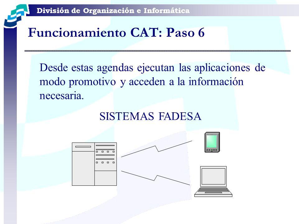 Funcionamiento CAT: Paso 6