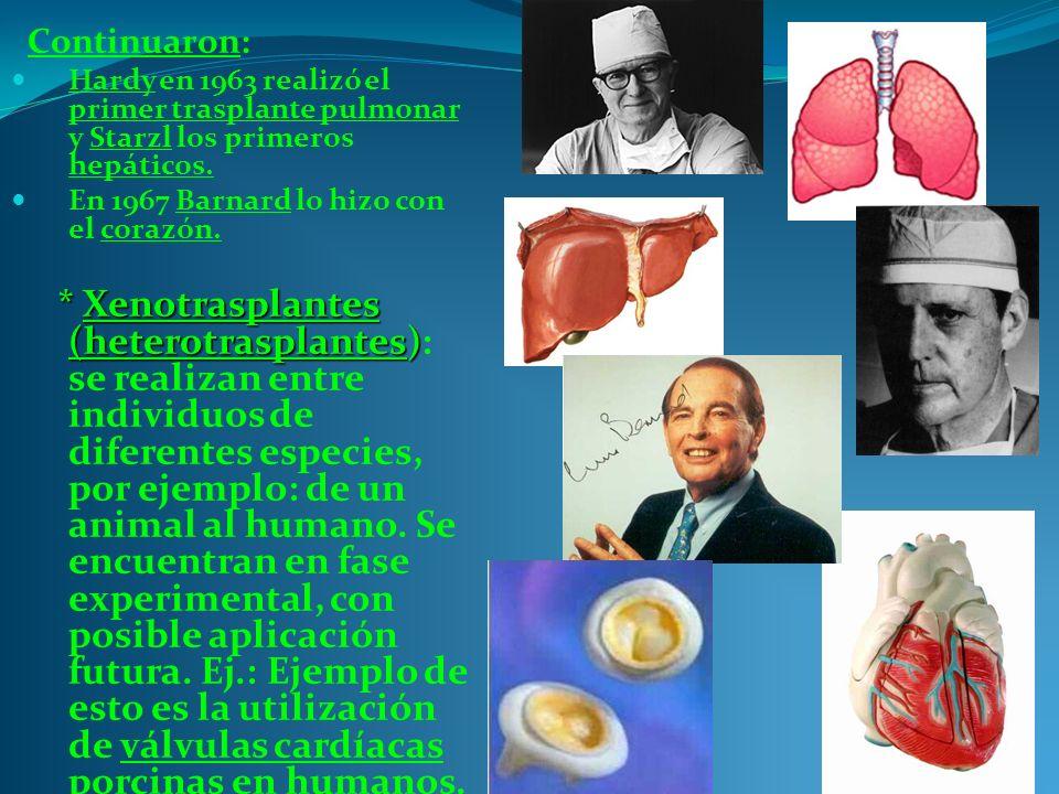 Continuaron: Hardy en 1963 realizó el primer trasplante pulmonar y Starzl los primeros hepáticos. En 1967 Barnard lo hizo con el corazón.