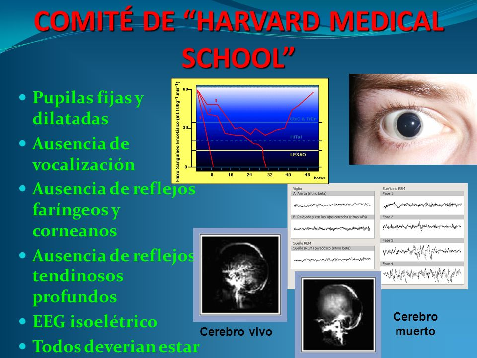 COMITÉ DE HARVARD MEDICAL SCHOOL
