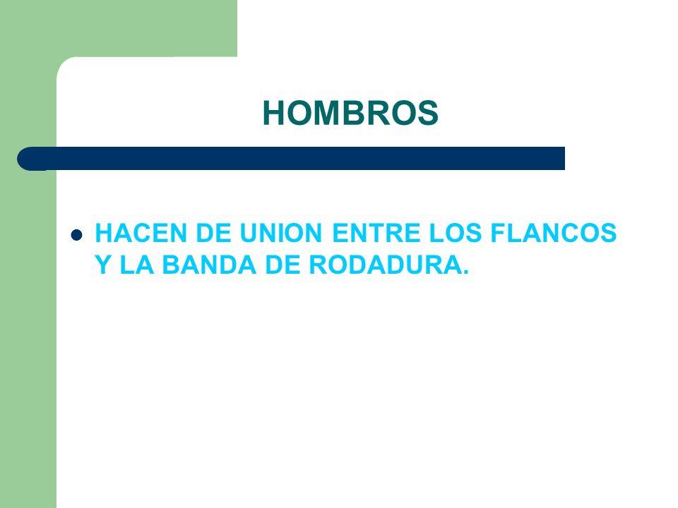 HOMBROS HACEN DE UNION ENTRE LOS FLANCOS Y LA BANDA DE RODADURA.
