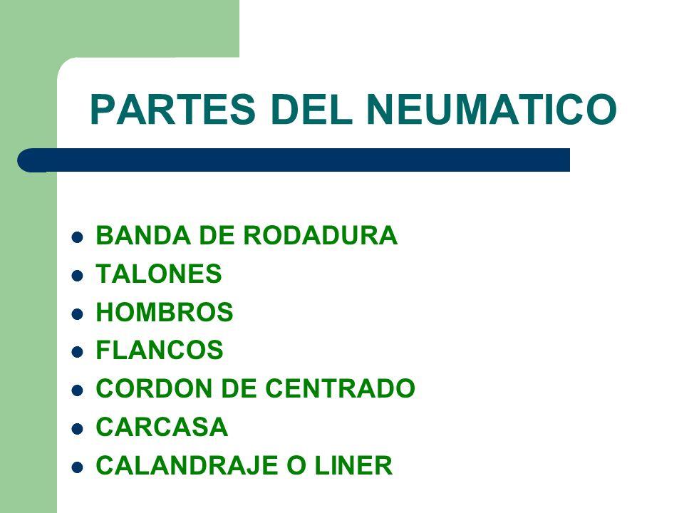 PARTES DEL NEUMATICO BANDA DE RODADURA TALONES HOMBROS FLANCOS