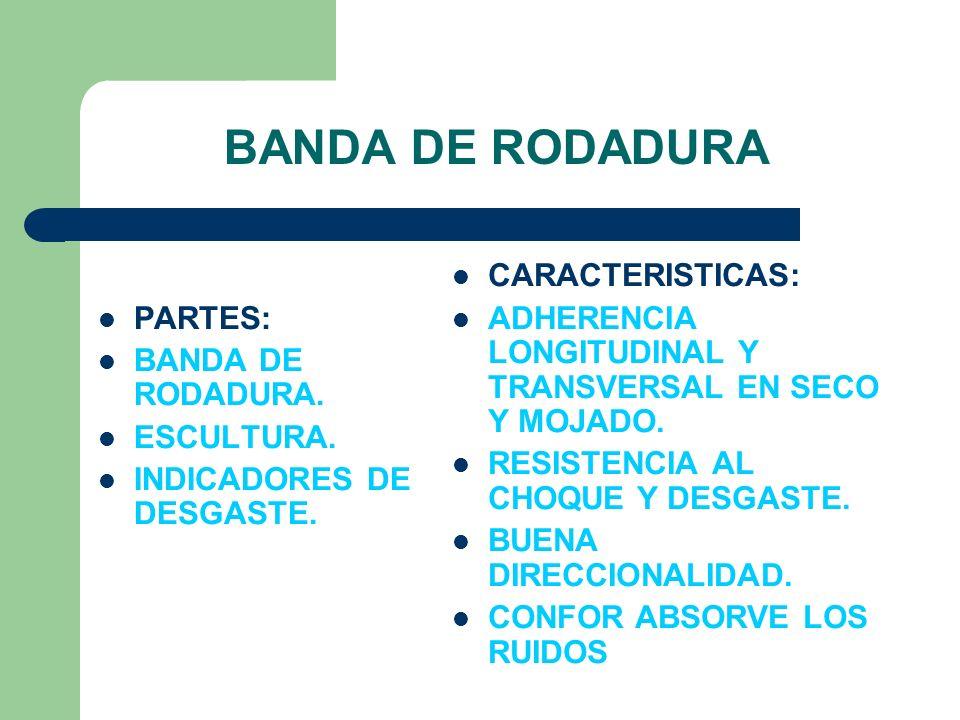 BANDA DE RODADURA PARTES: BANDA DE RODADURA. ESCULTURA.