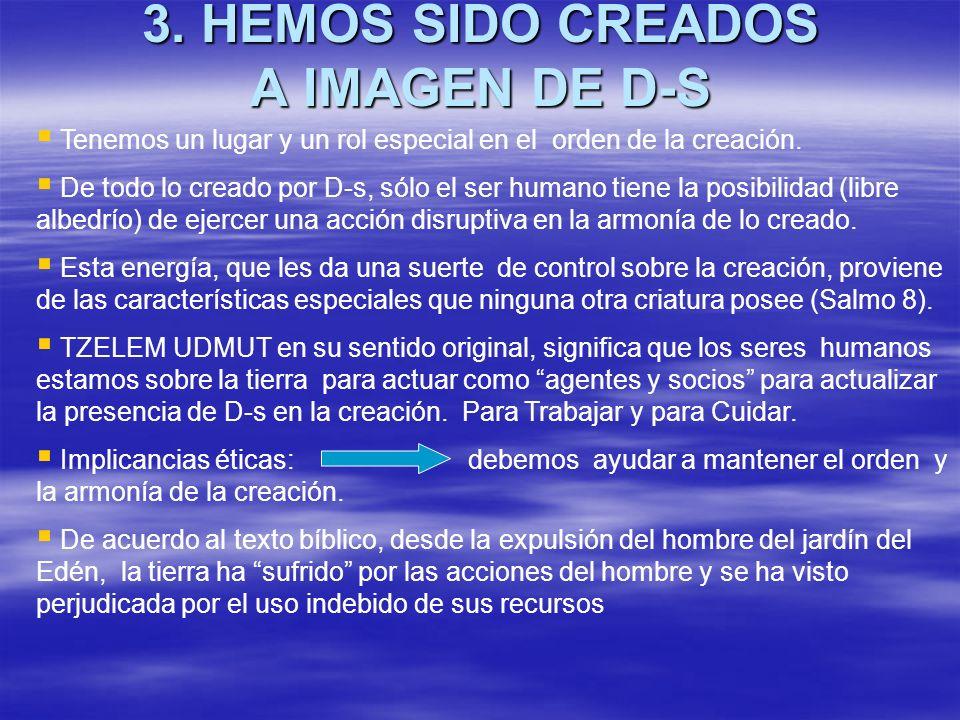 3. HEMOS SIDO CREADOS A IMAGEN DE D-S