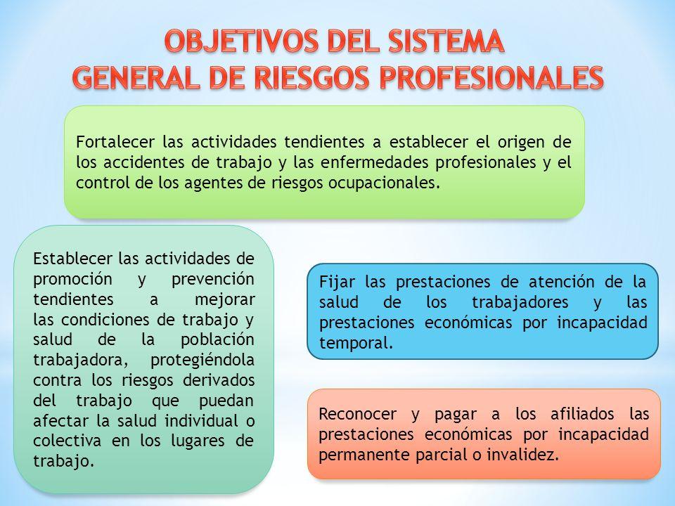 GENERAL DE RIESGOS PROFESIONALES