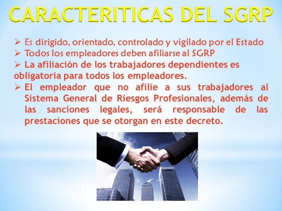 CARACTERITICAS DEL SGRP