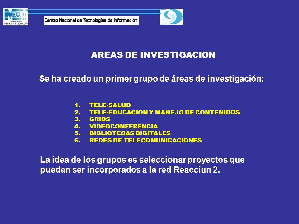AREAS DE INVESTIGACION