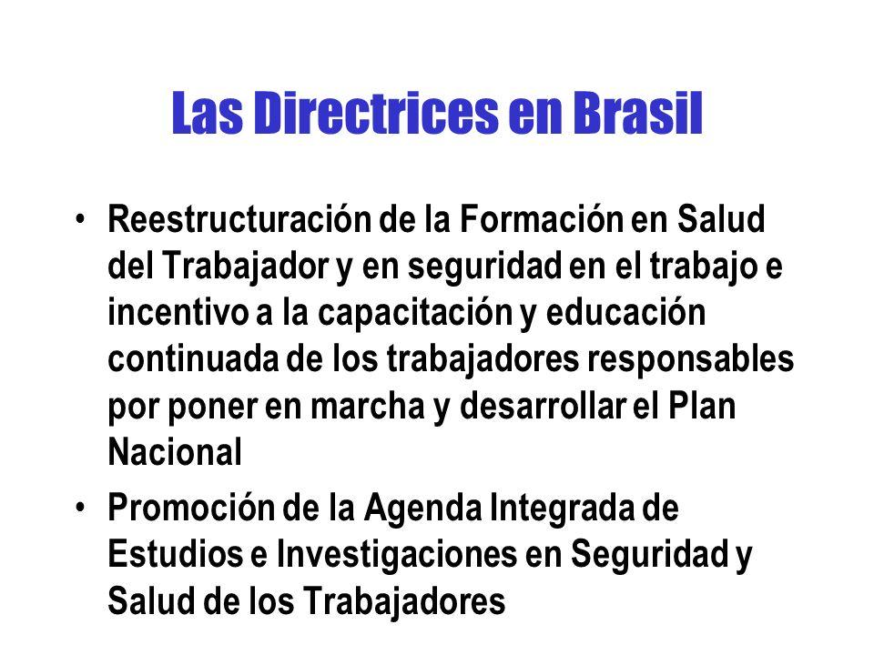 Las Directrices en Brasil