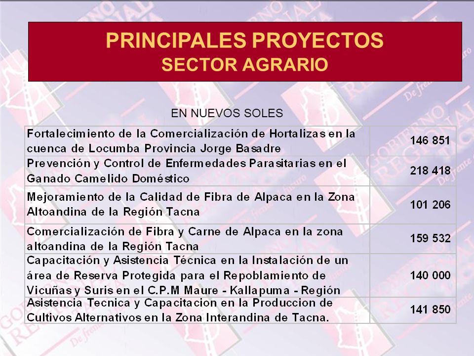 PRINCIPALES PROYECTOS SECTOR AGRARIO