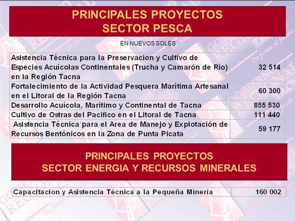 PRINCIPALES PROYECTOS SECTOR PESCA