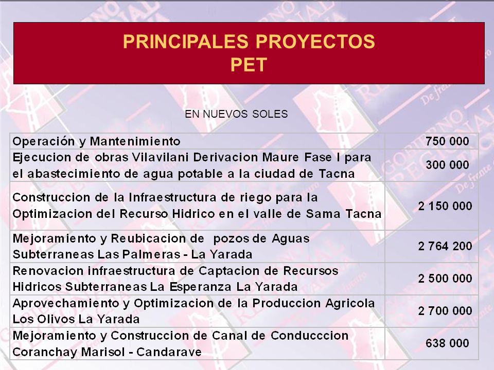 PRINCIPALES PROYECTOS PET