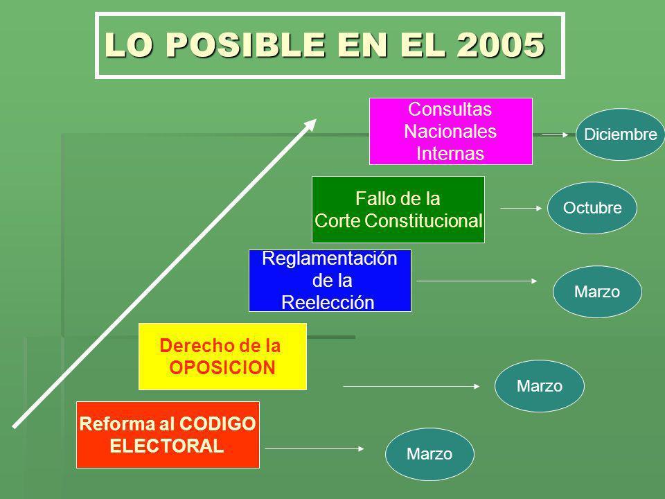 LO POSIBLE EN EL 2005 Consultas Nacionales Internas Fallo de la