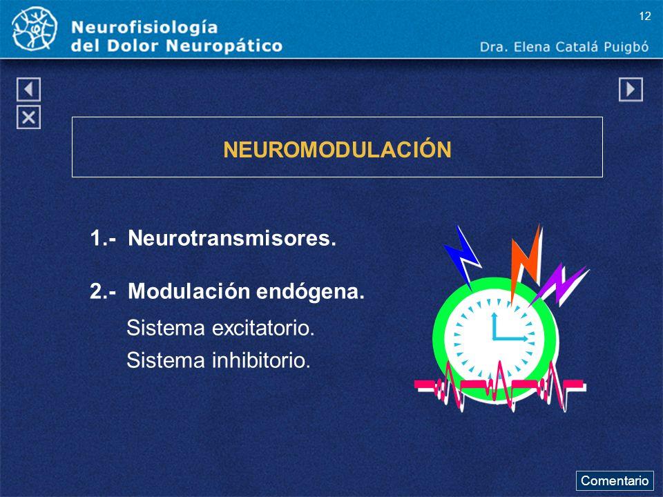 NEUROMODULACIÓN 1.- Neurotransmisores. 2.- Modulación endógena.