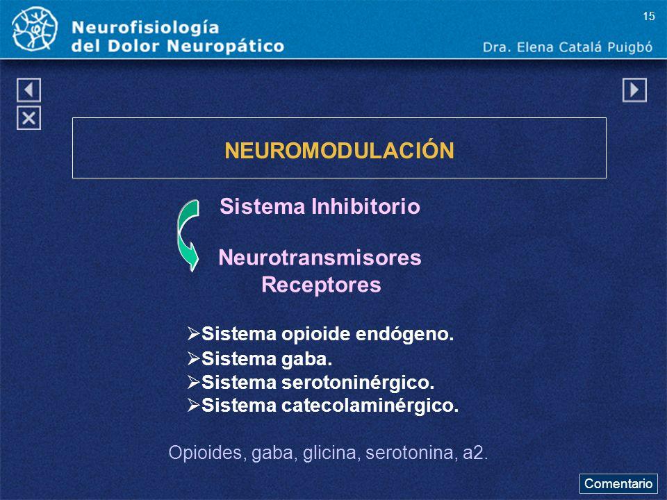 NEUROMODULACIÓN Sistema Inhibitorio Neurotransmisores Receptores