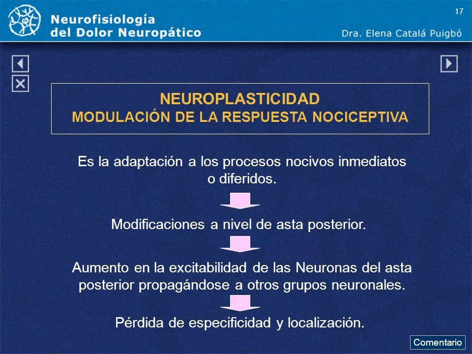 NEUROPLASTICIDAD MODULACIÓN DE LA RESPUESTA NOCICEPTIVA