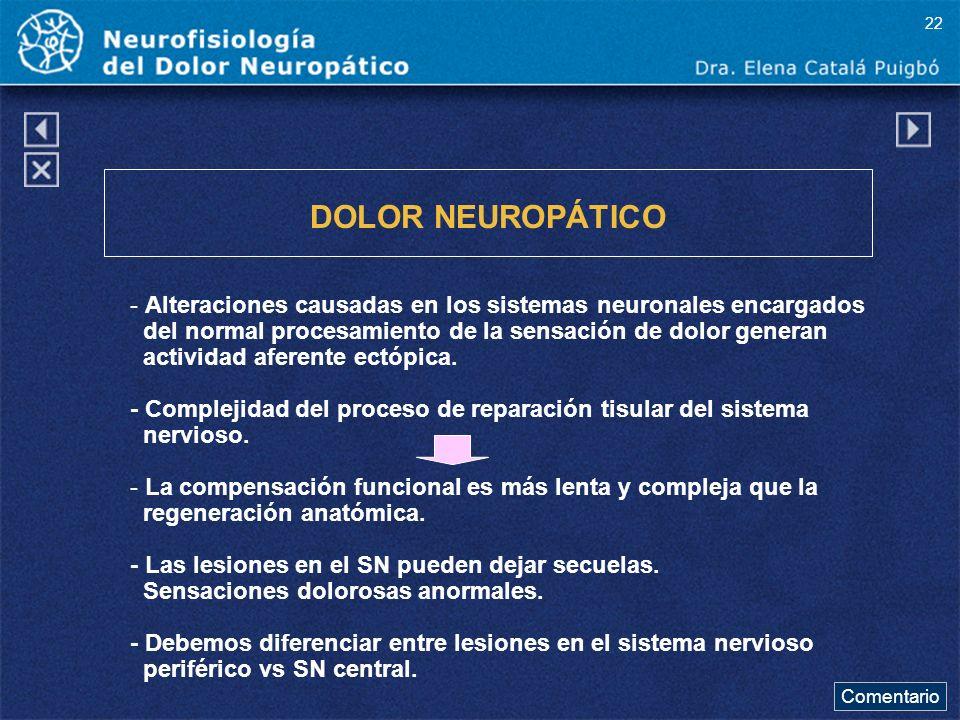 22 DOLOR NEUROPÁTICO. - Alteraciones causadas en los sistemas neuronales encargados. del normal procesamiento de la sensación de dolor generan.