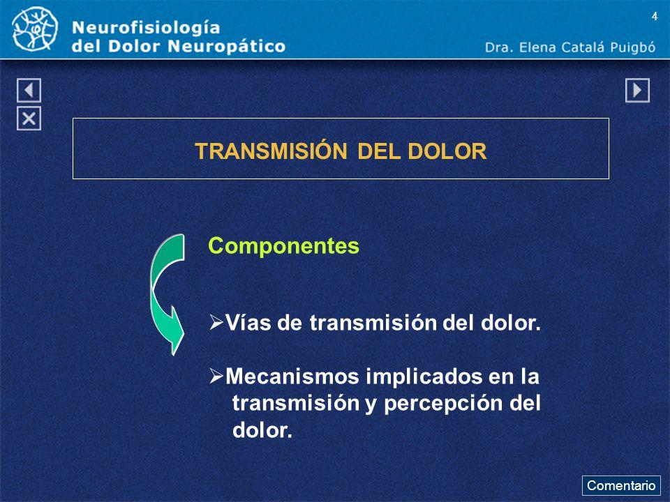 Componentes TRANSMISIÓN DEL DOLOR Vías de transmisión del dolor.