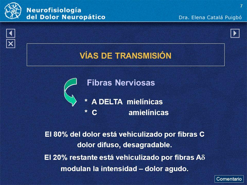 Fibras Nerviosas VÍAS DE TRANSMISIÓN * A DELTA mielínicas