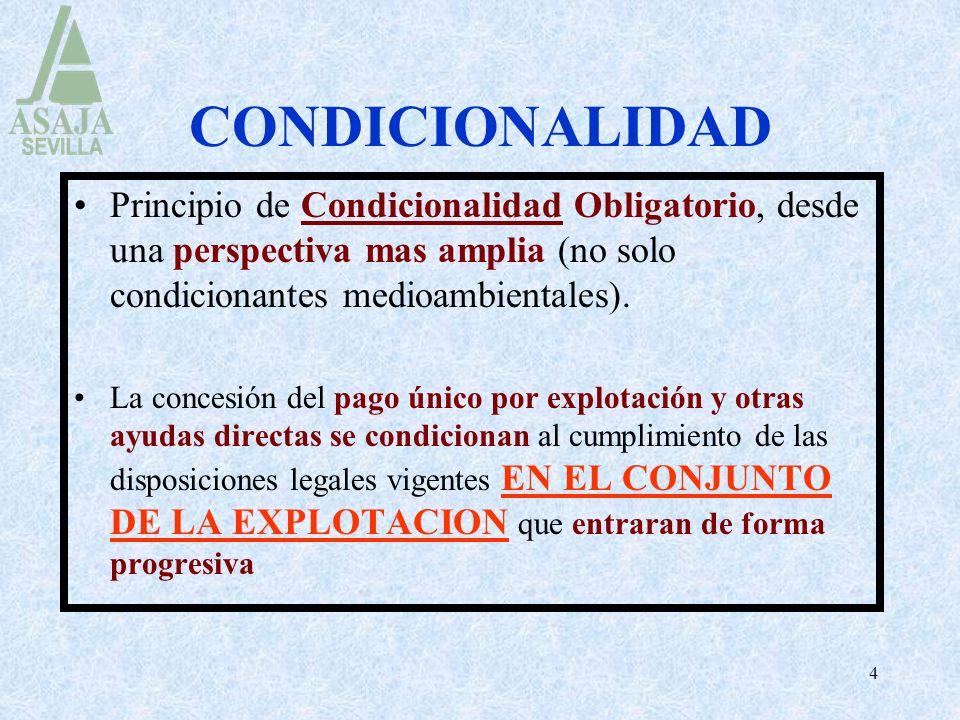 CONDICIONALIDAD Principio de Condicionalidad Obligatorio, desde una perspectiva mas amplia (no solo condicionantes medioambientales).