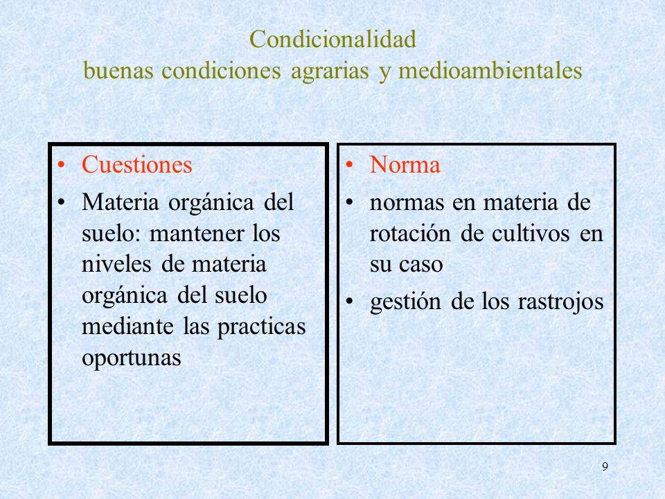 Condicionalidad buenas condiciones agrarias y medioambientales