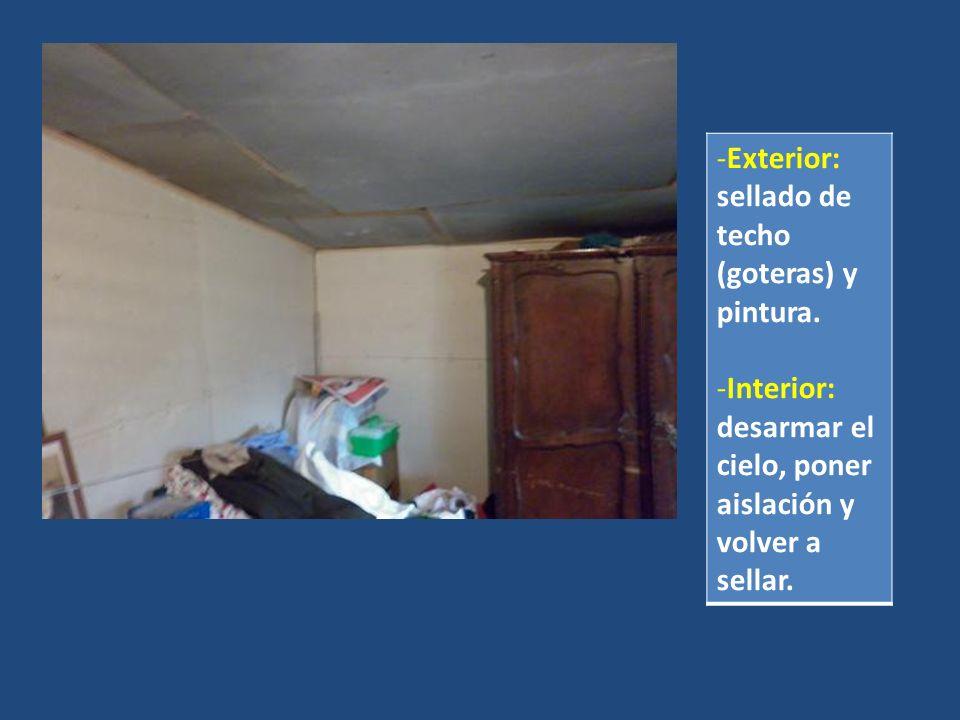 Exterior: sellado de techo (goteras) y pintura.