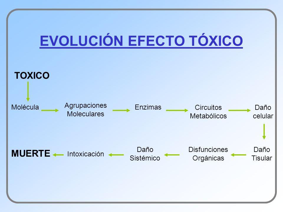 EVOLUCIÓN EFECTO TÓXICO