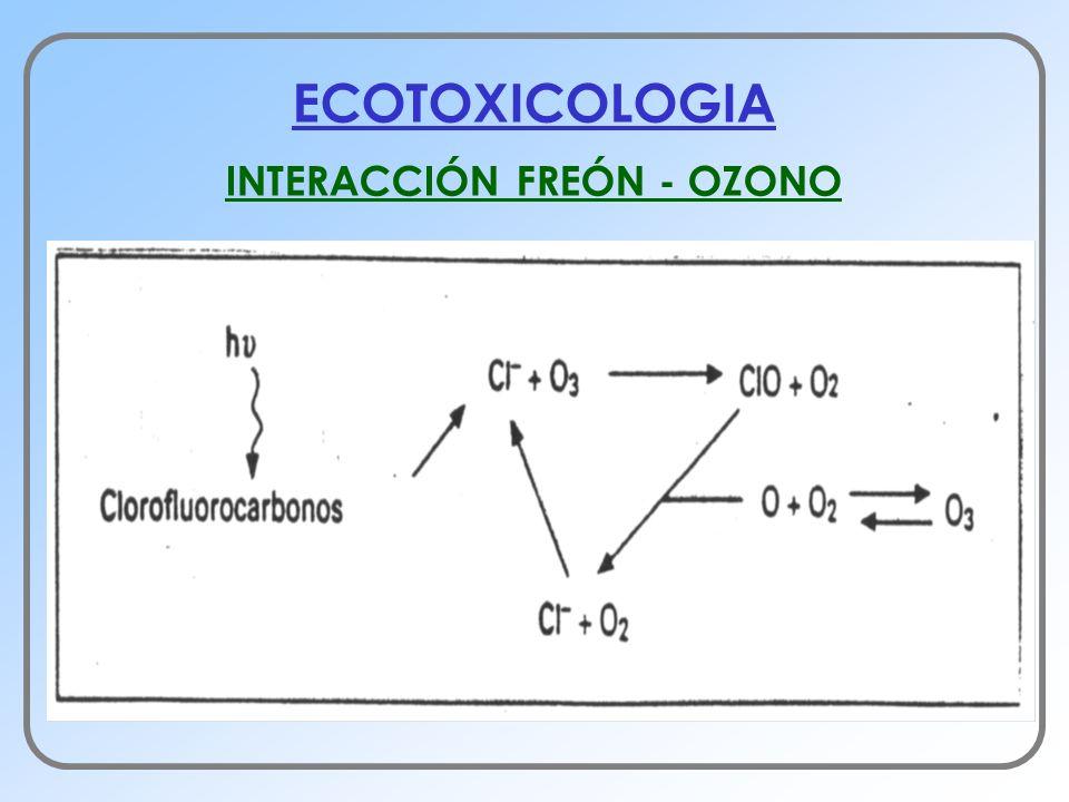 INTERACCIÓN FREÓN - OZONO
