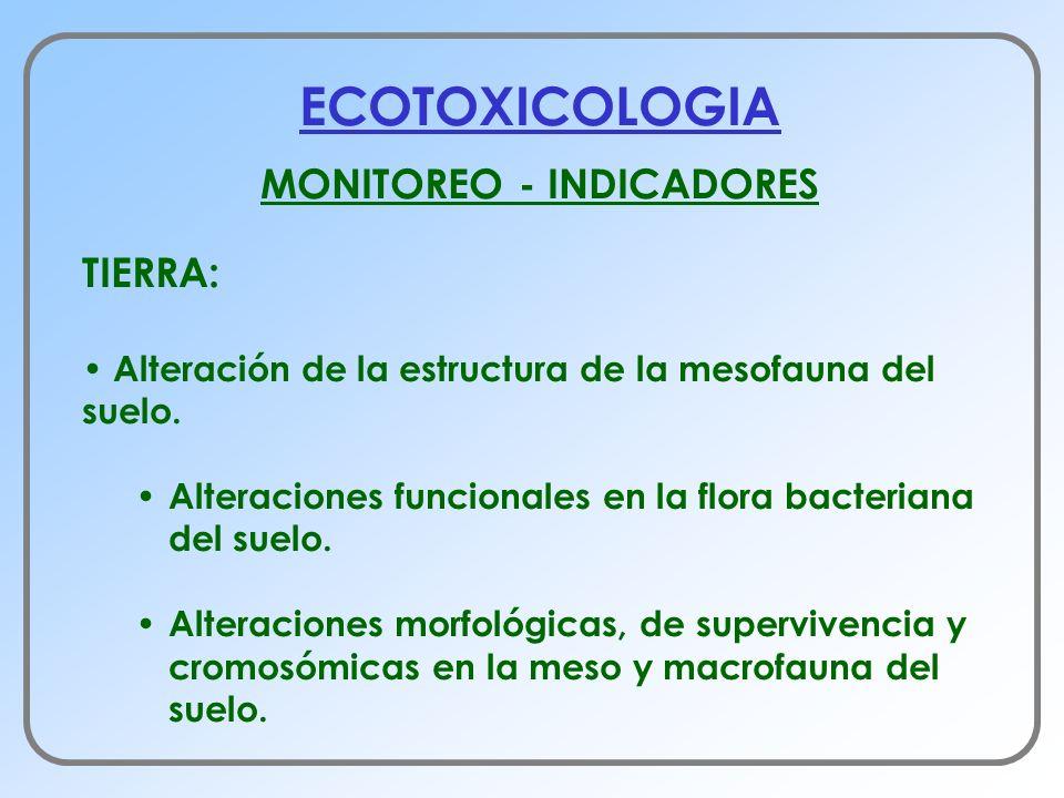 MONITOREO - INDICADORES