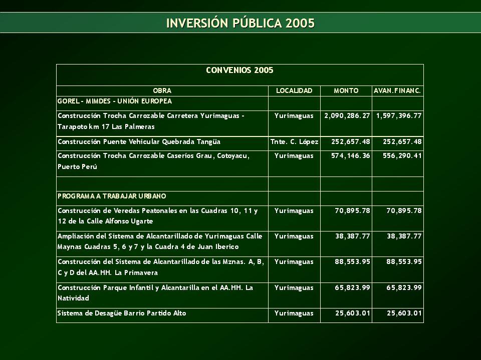 INVERSIÓN PÚBLICA 2005