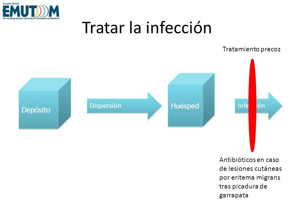 Tratar la infección Tratamiento precoz Huésped Depósito Dispersión