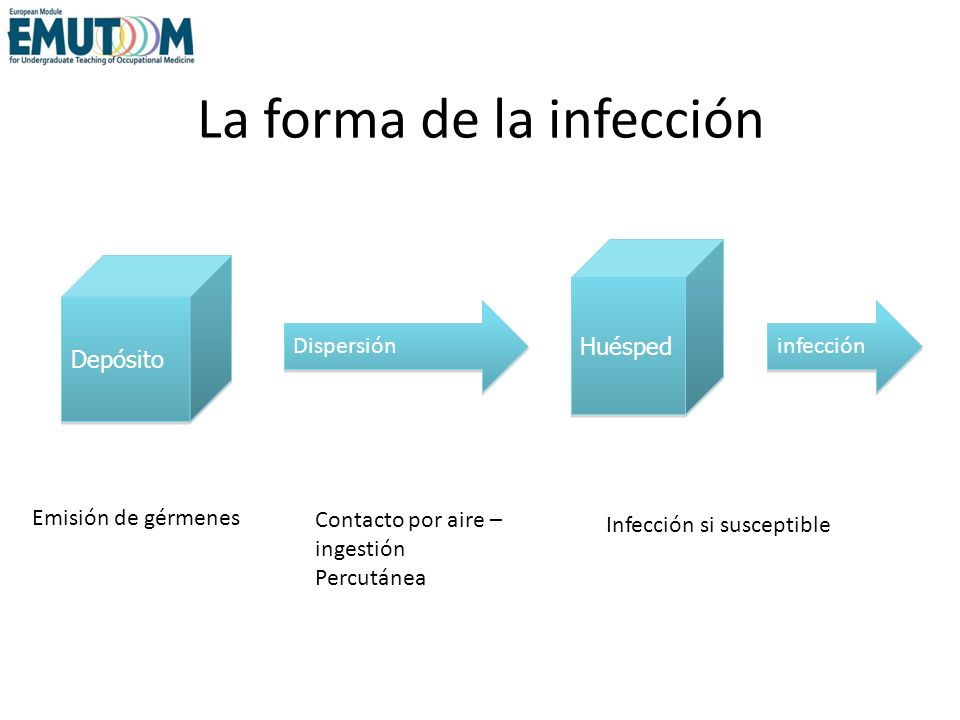 La forma de la infección