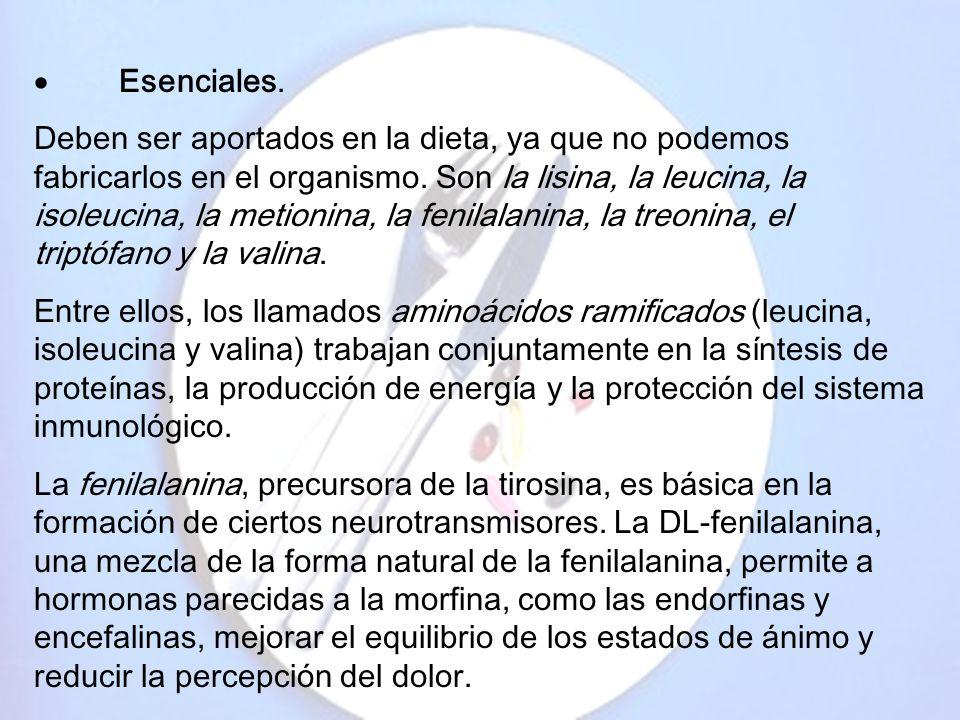 · Esenciales.