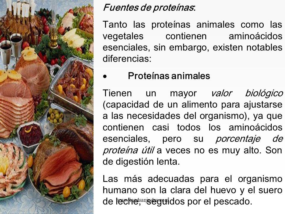 Fuentes de proteínas: Tanto las proteínas animales como las vegetales contienen aminoácidos esenciales, sin embargo, existen notables diferencias:
