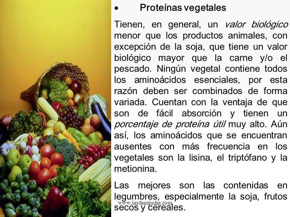 · Proteínas vegetales