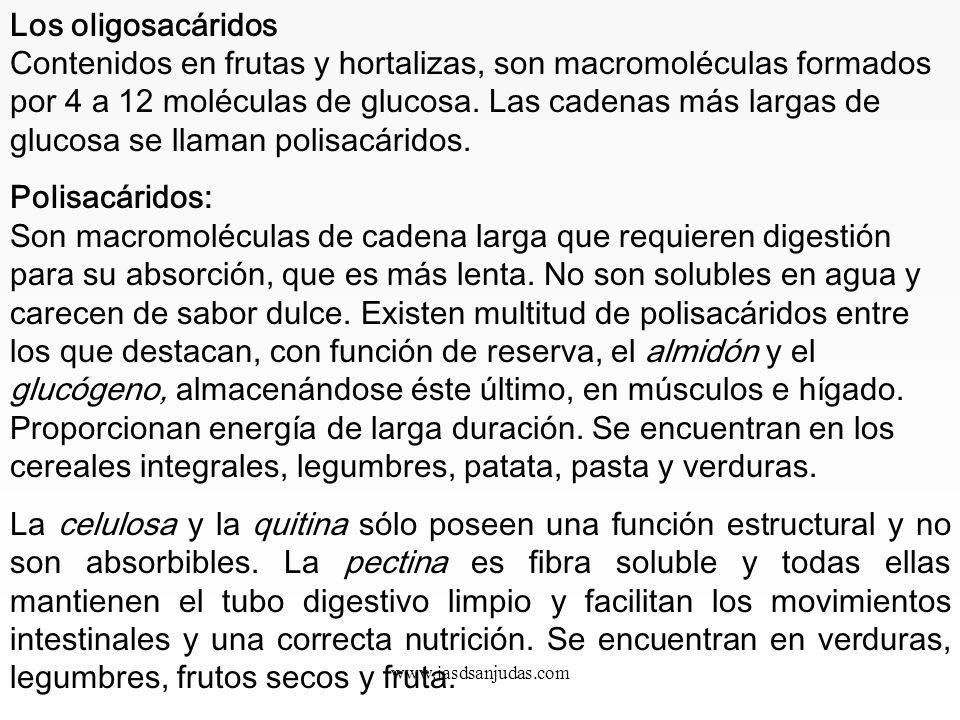 Los oligosacáridos Contenidos en frutas y hortalizas, son macromoléculas formados por 4 a 12 moléculas de glucosa. Las cadenas más largas de glucosa se llaman polisacáridos.