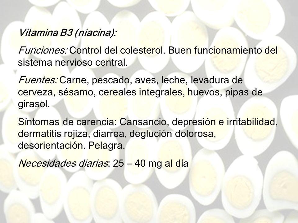 Necesidades diarias: 25 – 40 mg al día