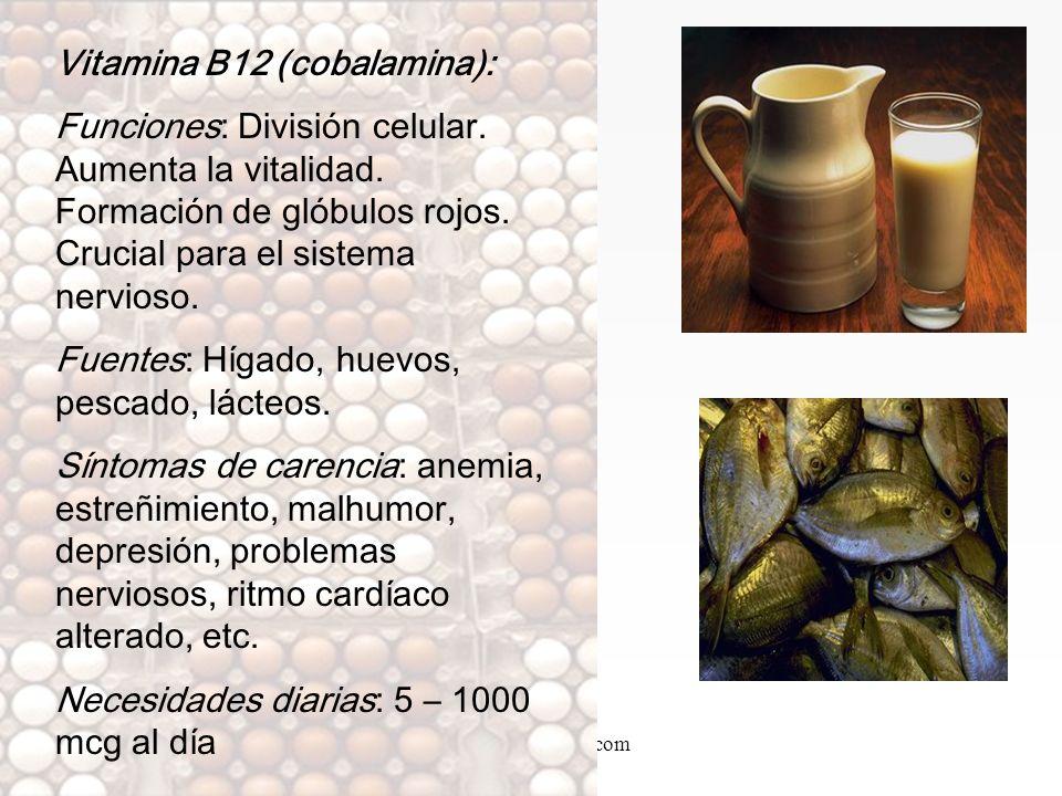 Vitamina B12 (cobalamina):