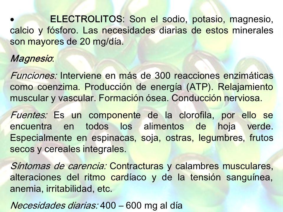 Necesidades diarias: 400 – 600 mg al día