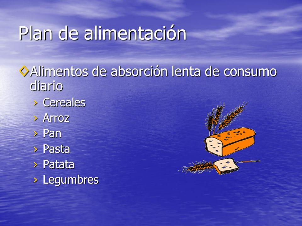 Plan de alimentación Alimentos de absorción lenta de consumo diario