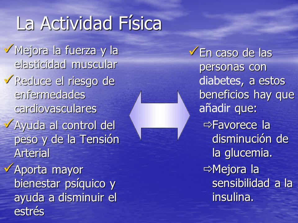 La Actividad Física Mejora la fuerza y la elasticidad muscular