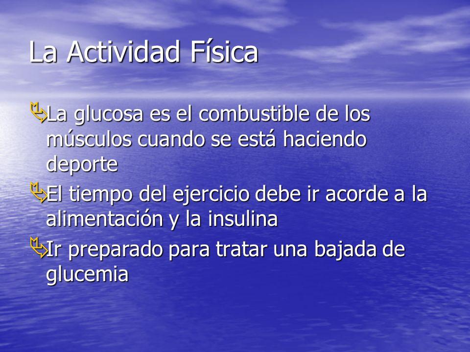 La Actividad Física La glucosa es el combustible de los músculos cuando se está haciendo deporte.