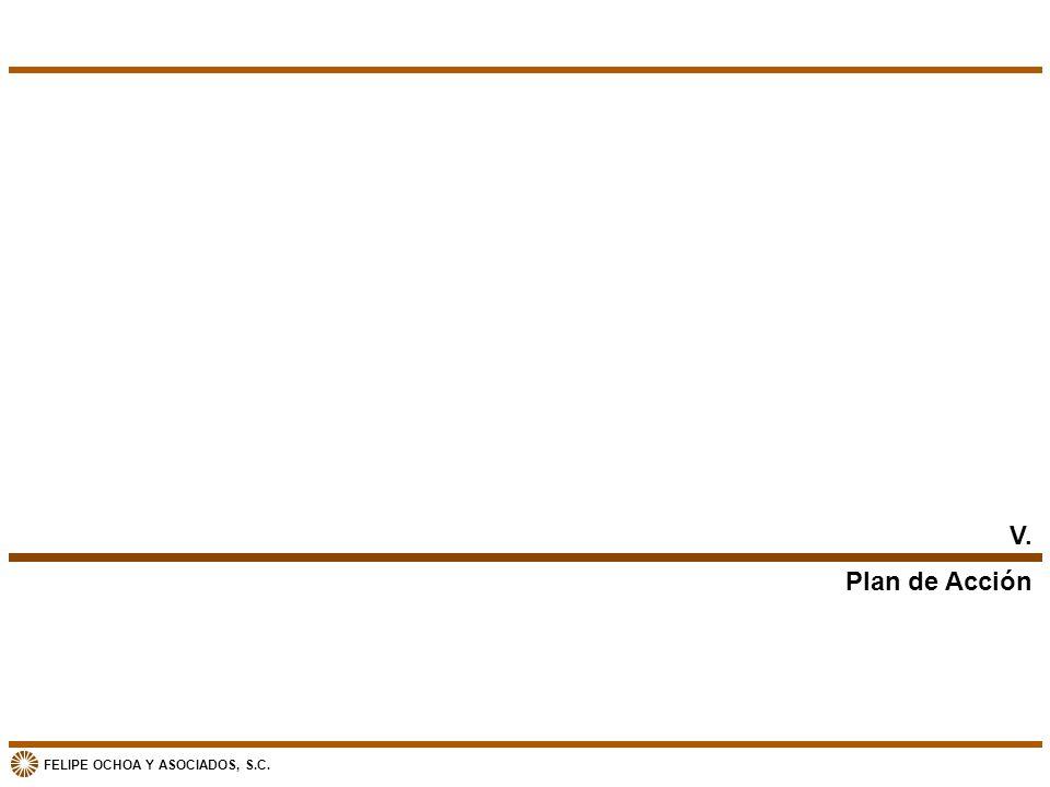 V. Plan de Acción