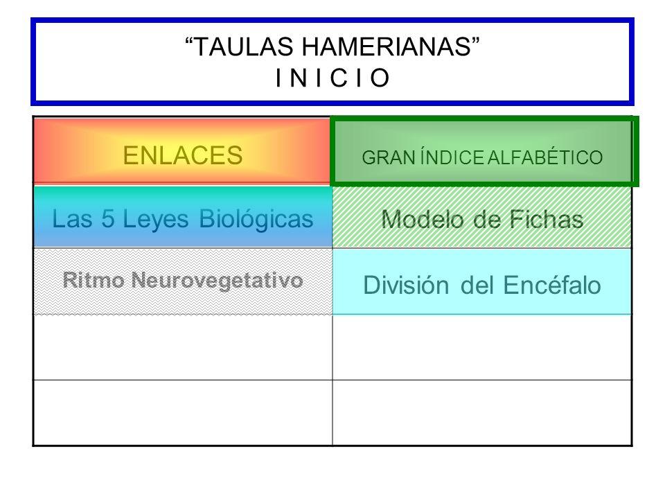 TAULAS HAMERIANAS I N I C I O