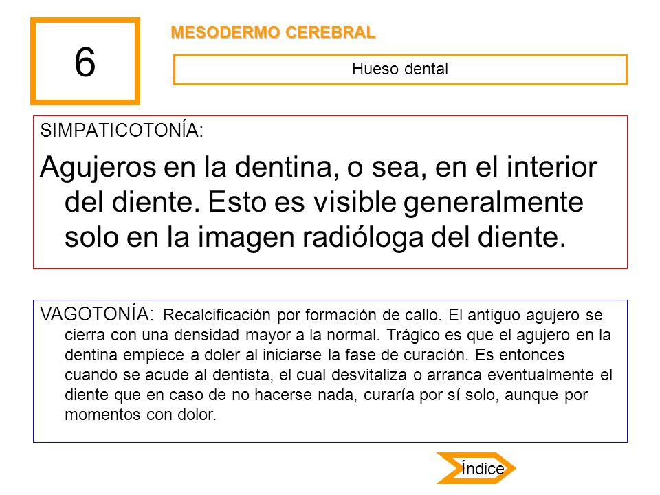 6 MESODERMO CEREBRAL. Hueso dental. SIMPATICOTONÍA: