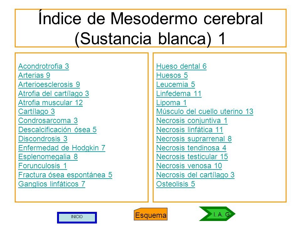 Índice de Mesodermo cerebral (Sustancia blanca) 1