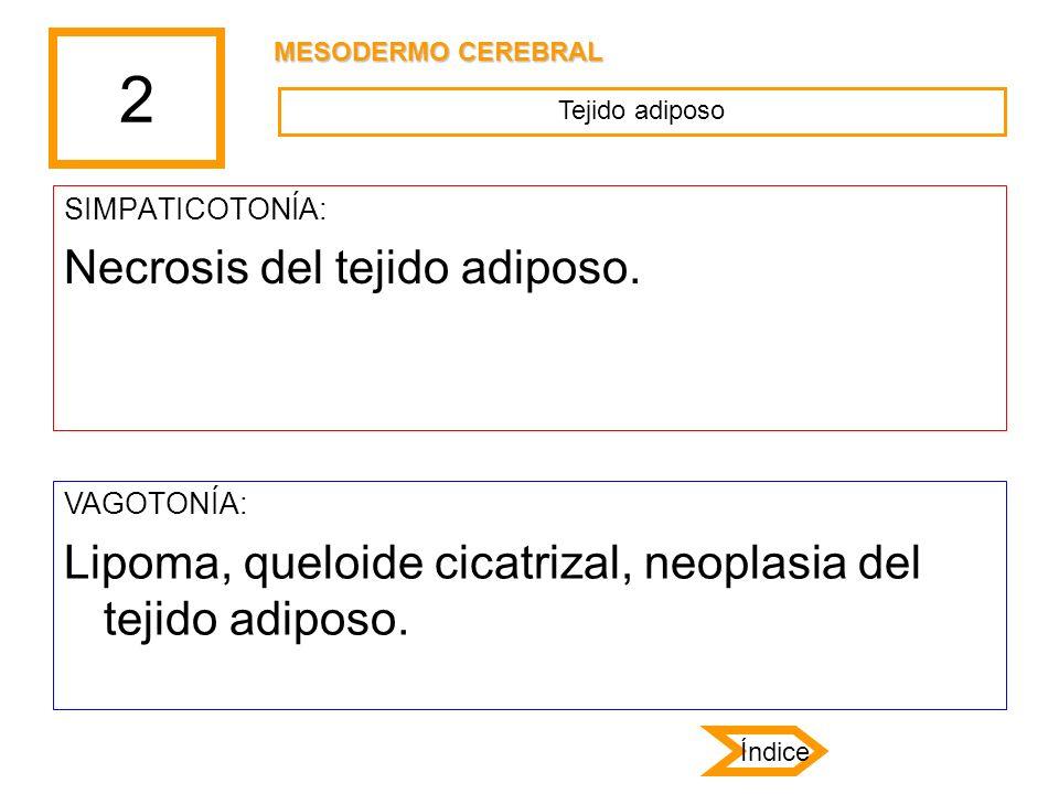 2 Necrosis del tejido adiposo.