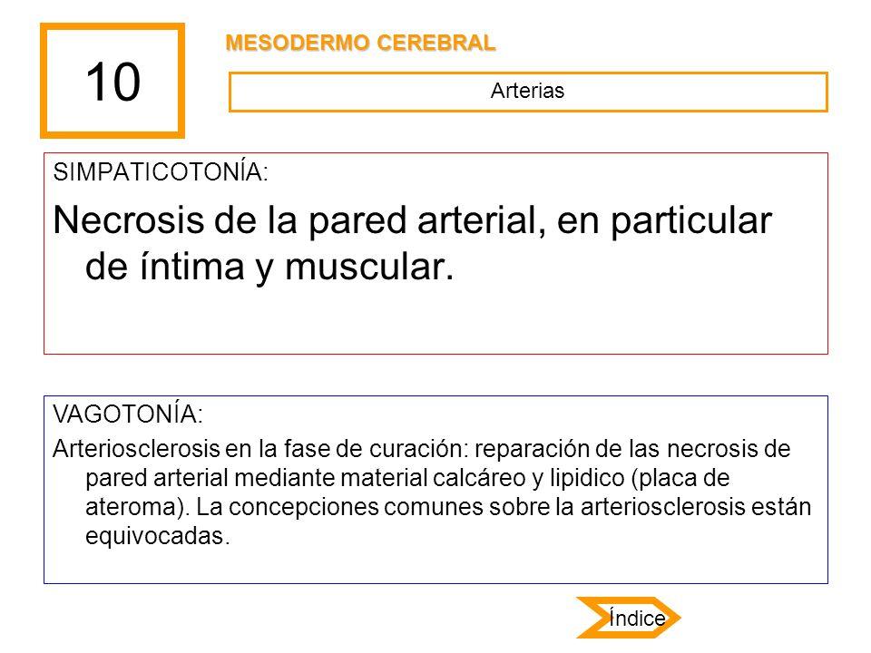 10 Necrosis de la pared arterial, en particular de íntima y muscular.